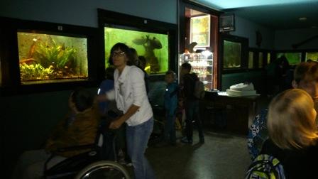 Akvarij-terarij Maribor
