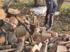 alec5a1-drva