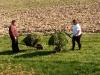 valentina-na-travniku